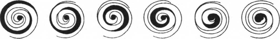 схема механизма сжатия внутри спирального насоса